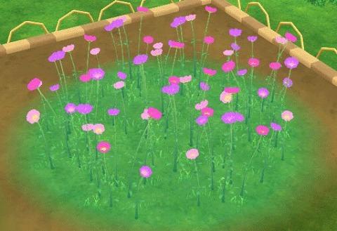 アストルティアの草木家具