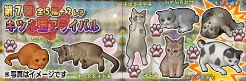 ドラクエ10ガニャポンキツネ猫アライバル