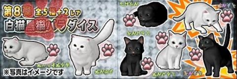 ドラクエ10白猫黒猫パラダイス
