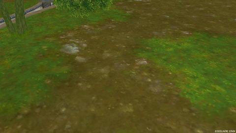 新緑の地面