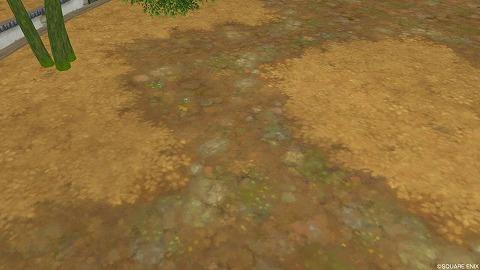枯草の地面
