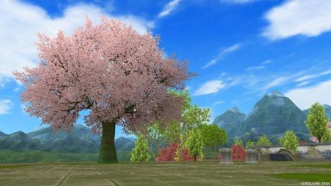 桜咲く木々