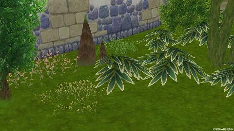 和風の草花