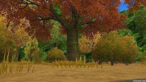 紅葉の広場