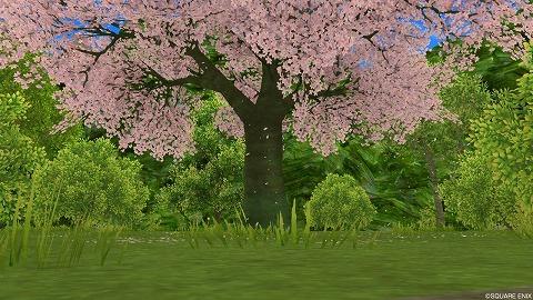 桜舞う広場