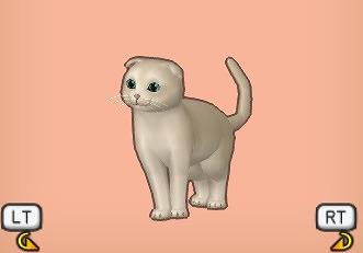 たれキナリ猫