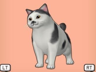 ドラクエ10灰ブチ太猫