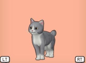 ドラクエ10灰ハチワレ猫