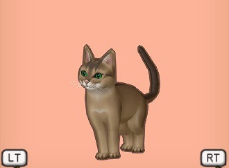 ドラクエ10こげ茶キツネ猫