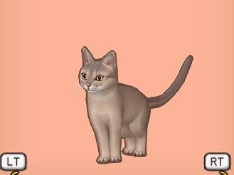ドラクエ10キツネ猫