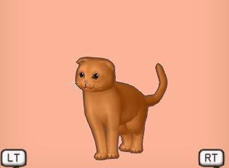 ドラクエ10たれ赤茶猫
