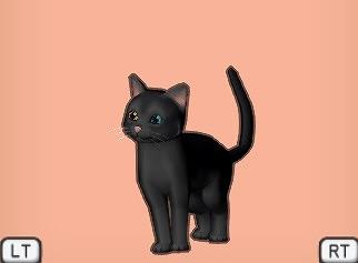ドラクエ10黒猫オッド