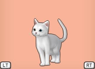 ドラクエ10白猫オッド