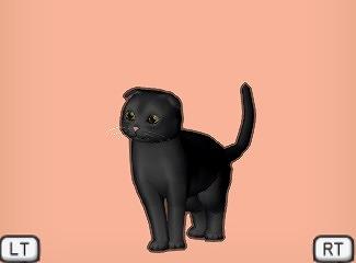 ドラクエ10たれ黒猫