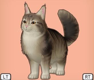 ドラクエ10大キジ猫