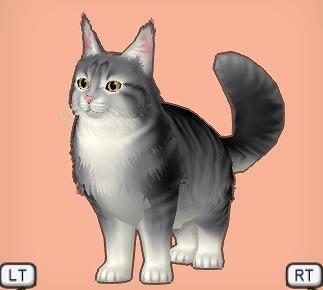 ドラクエ10大サバ猫