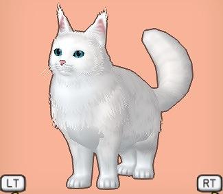 ドラクエ10大白猫