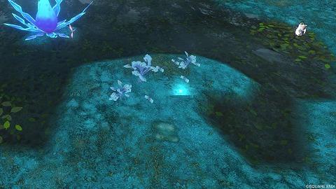 ドラクエ10ガウシア樹海カオスベリー