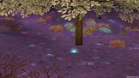 ドラクエ10デスディオ暗黒荒原魔紅樹の板