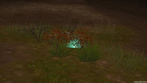 ドラクエ10未完のラゼアの風穴うつろい草