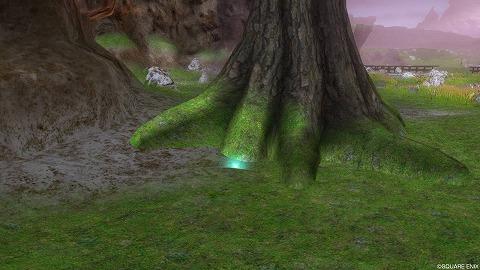 ドラクエ10グラデル台地魔紅樹の板