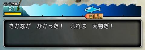 ドラクエ10旬の本マグロ釣り方