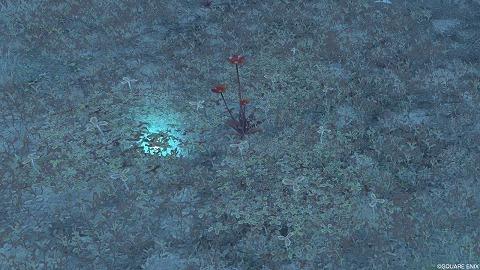 ドラクエ10銀の森うつろい草シルク草