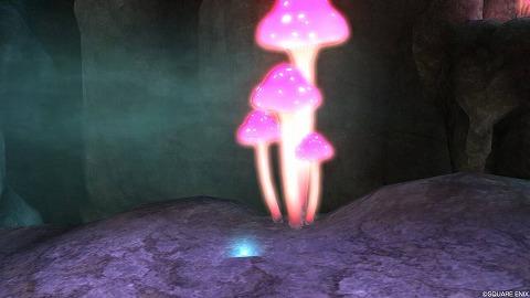 ドラクエ10盾ルクスガルン大空洞宵闇のジェル
