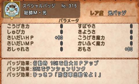 ドラクエ10総帥M・光